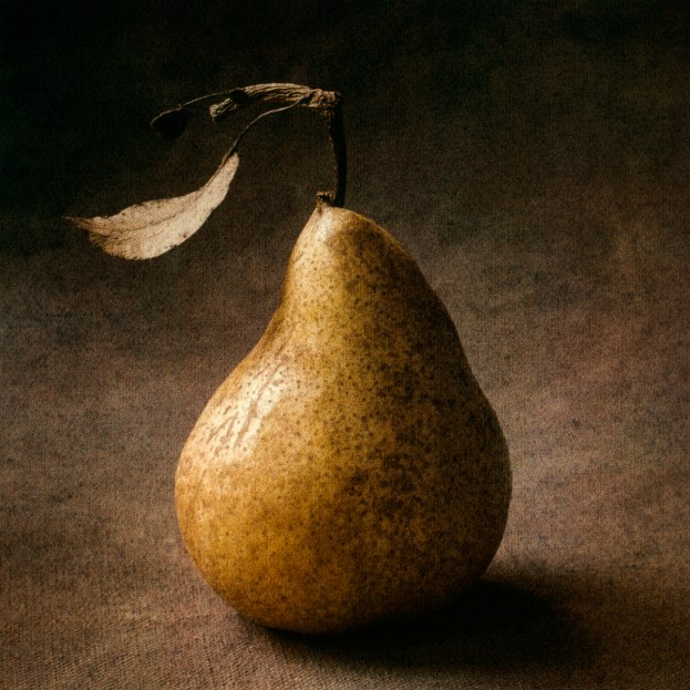 Pear Triptych I by Cy DeCosse