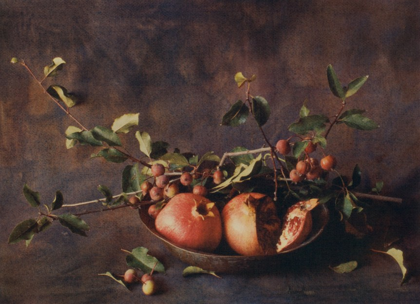 Pomegranates with Leaves by Cy DeCosse