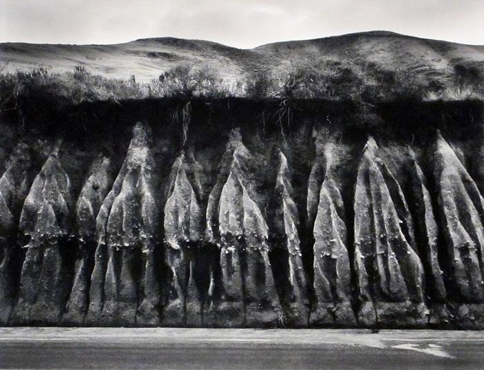 Erosion,1959 by Wynn Bullock,© Bullock Family Photography, LLC