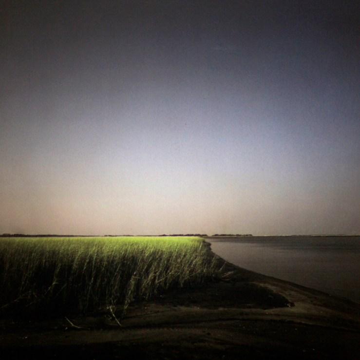 Cape Fear © Diana Bloomfield