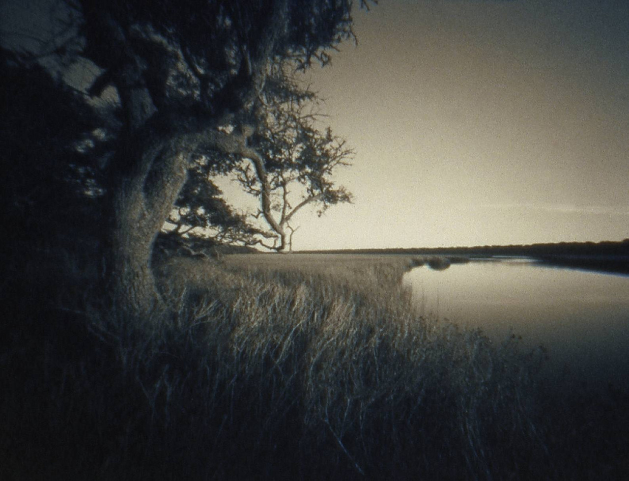 Middle Island © Diana Bloomfield