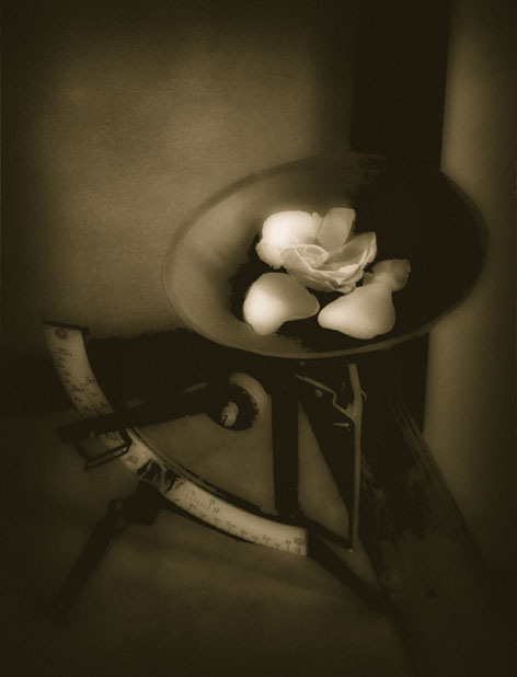 The Scale © Josephine Sacabo