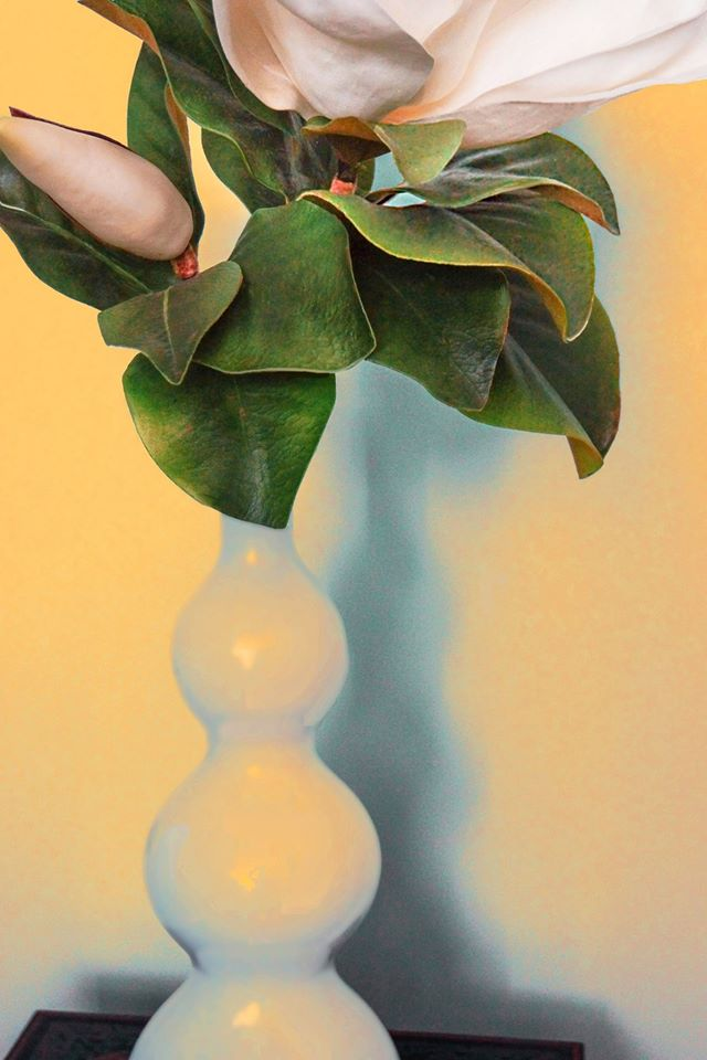 Still Life © Carolyn Louise Newhouse
