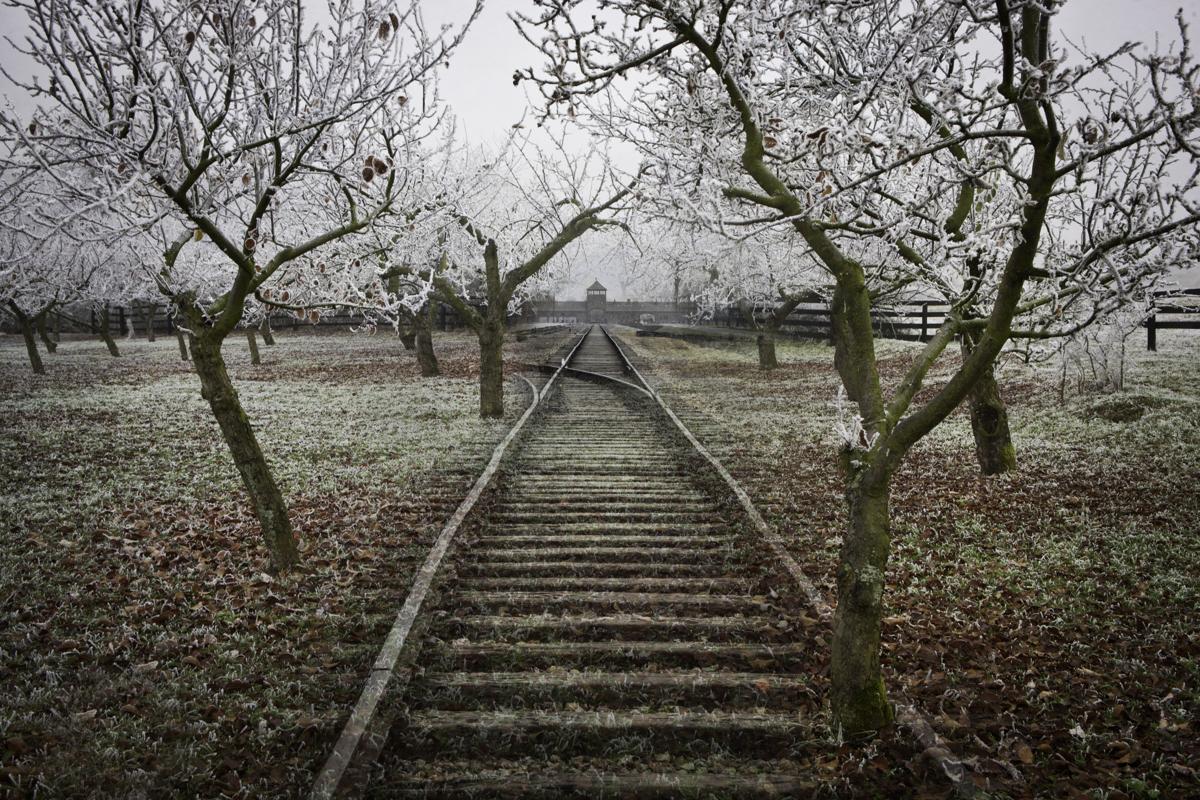 Zitenice Orchard © Keron