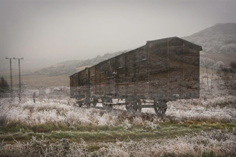 Cattle Car/Countryside © Keron Psillas