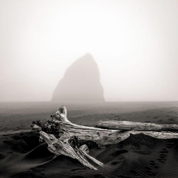 Driftwood and Stone, Oregon, 2013 © Matthew Vogt