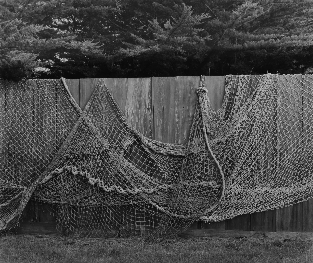 Fish Net over Fence, by Edna Bullock © Bullock Family Photography LLC