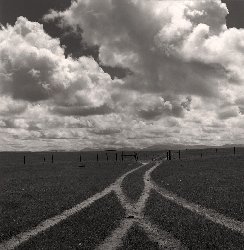 Cross Roads © Birgit Maddox