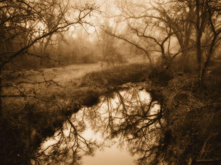 Pond Near Shingle Springs © Kerik Kouklis