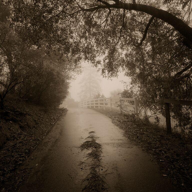 The Road Home © Kerik Kouklis