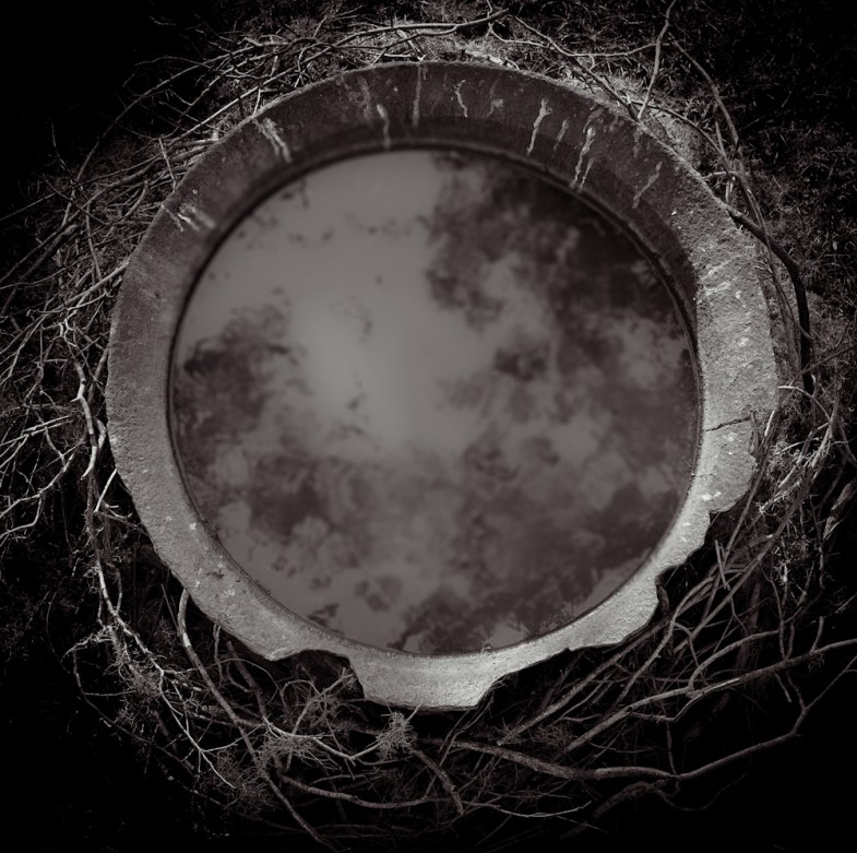 Portal © Lori Vrba