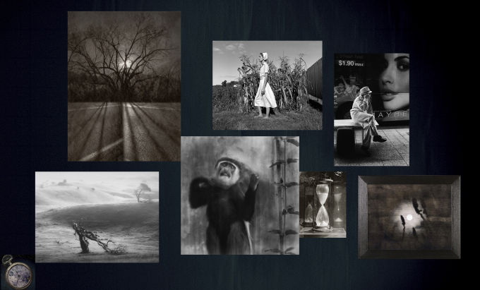 hiresfile-depth-of-field2, Images © Anne Berry, Honey Lazar, Deb Young, Jennifer Schlesinger, Mihai Florea, Blue Mitchell, Julie Meridian