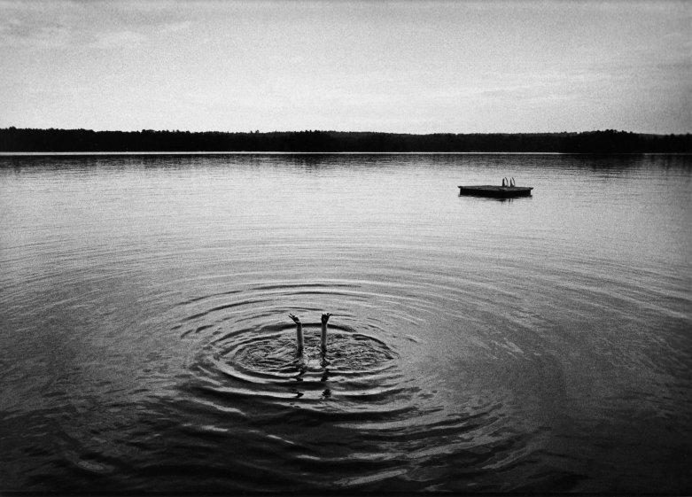 © David Carol