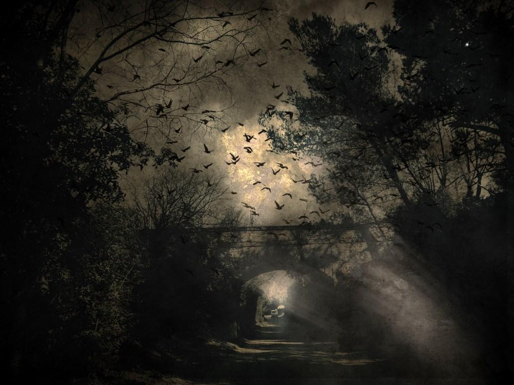 Pont aux Oiseaux © Agnes Courrault
