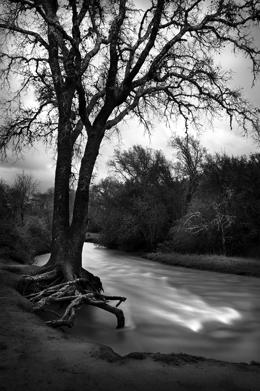 Winter Stream © Aryan Chappell