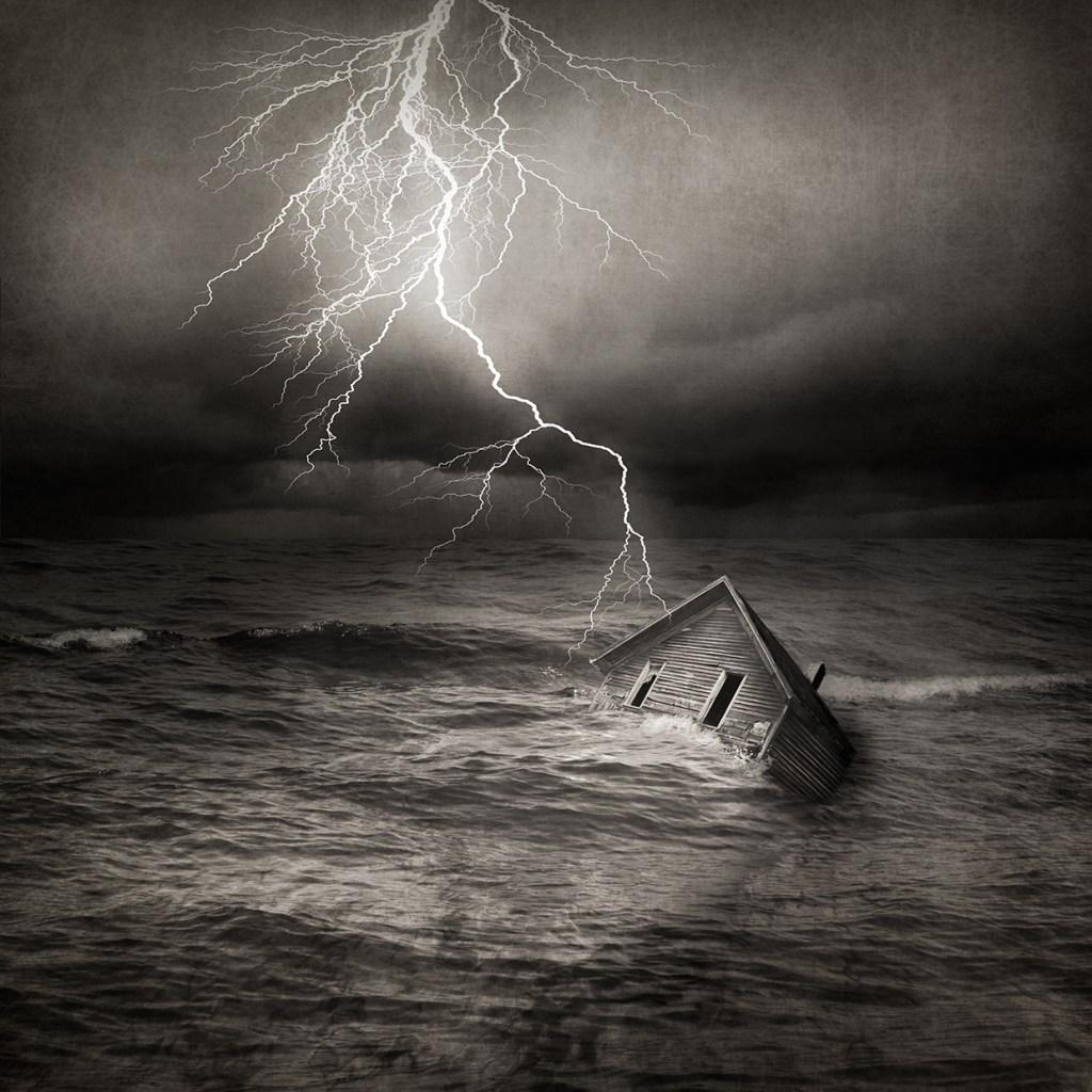 Fury © Carol Mollhagen Erb