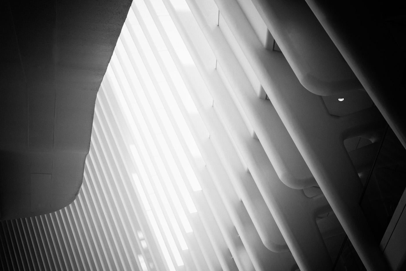Oculus © Danica O. Kus