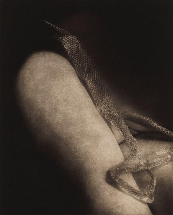 Remnants 7 © Karen Hymer