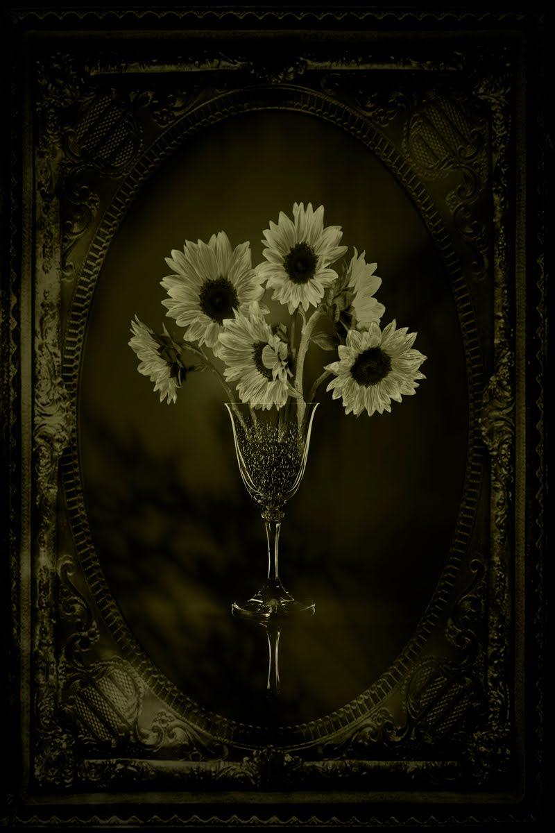 Still Life with Framed Sunflowers © Eduardo Fujii