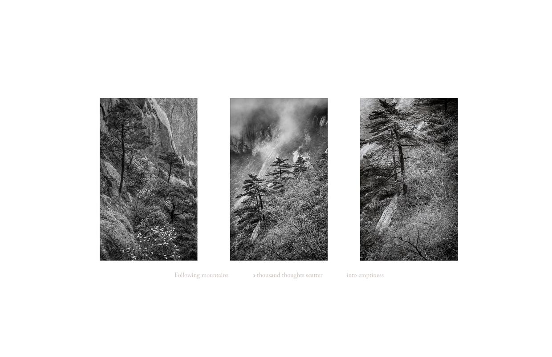 Seeing Silence 7 © Jodie Hulden