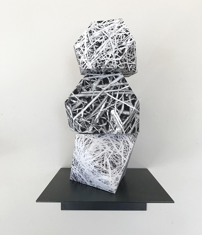 Nest © Lisa Nebenzahl