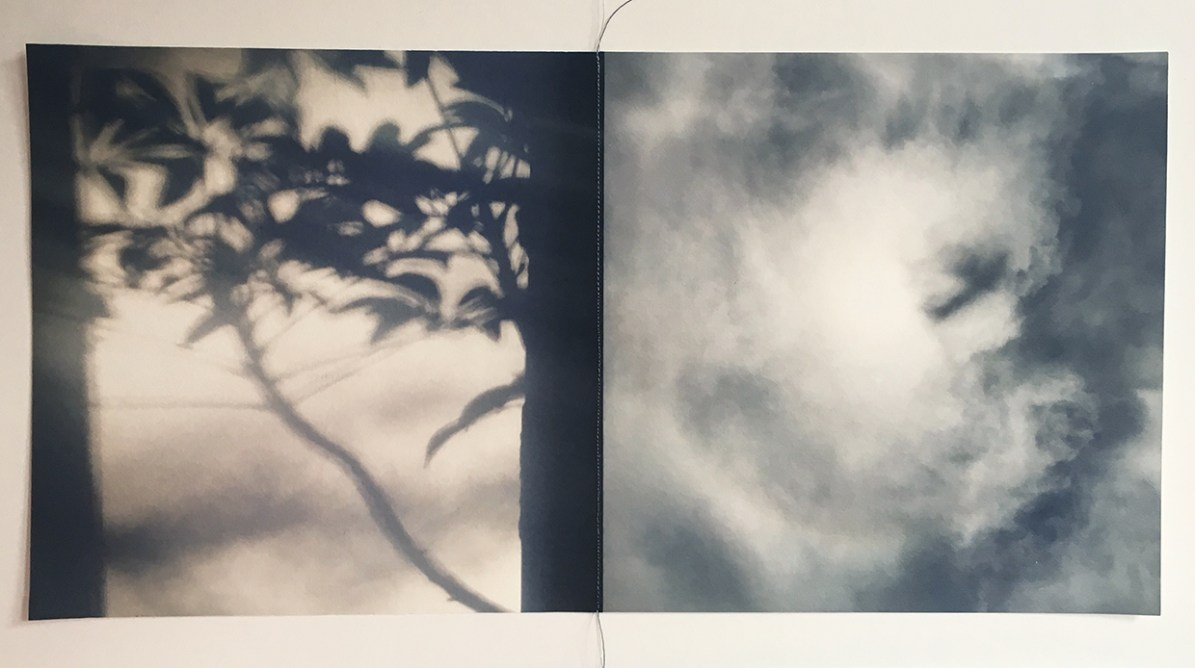 Tree Clouds © Lisa Nebenzahl