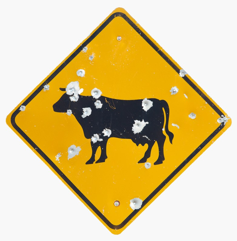 Cattle Crossing © Brian Kosoff