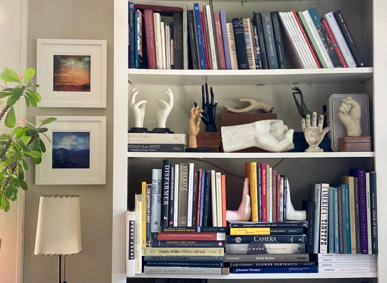 Bookcase 1 © Susan Bryant