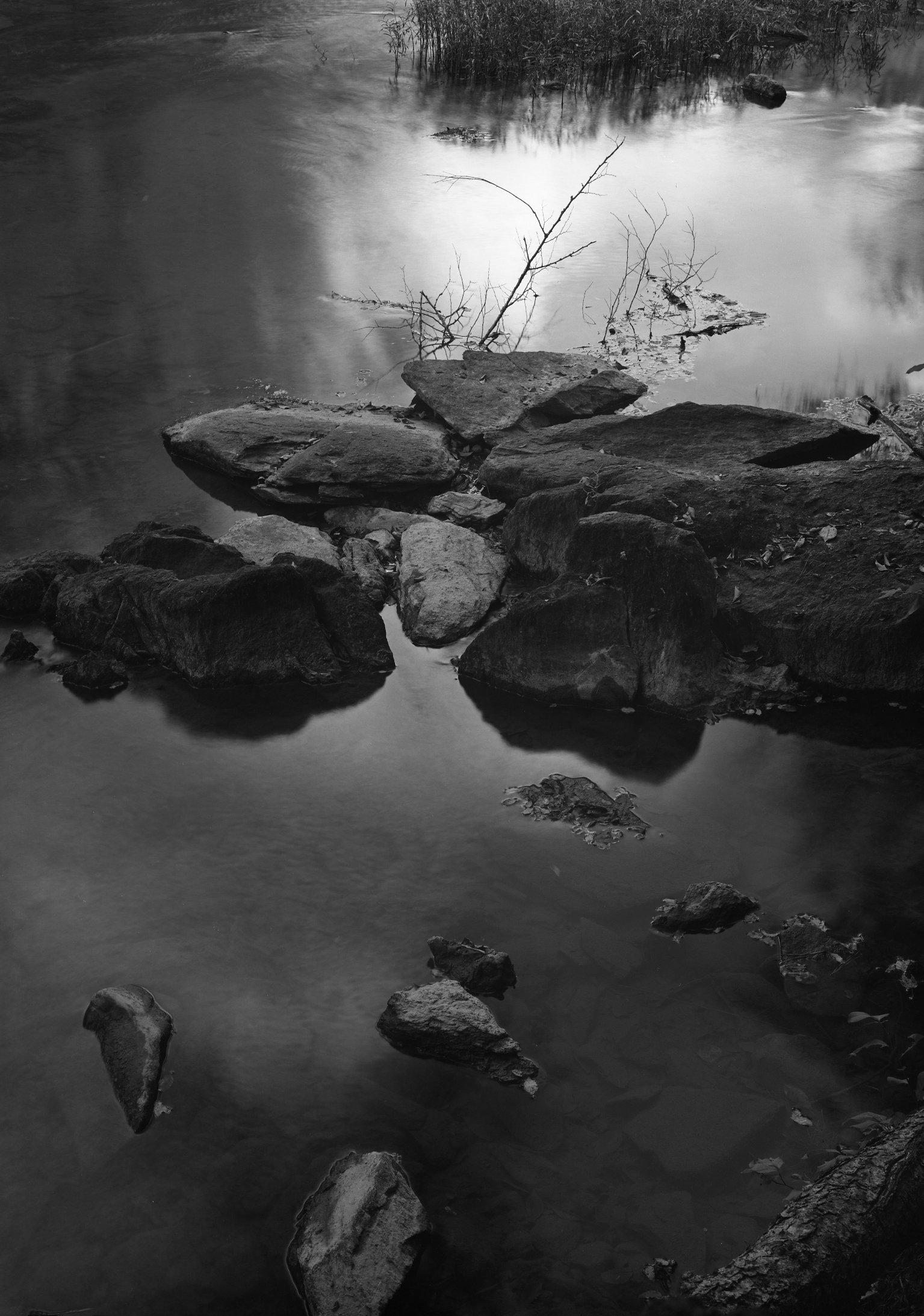 Pea Creek © Holden Richards