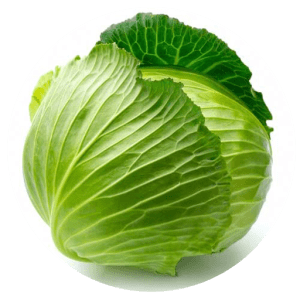 Cabbage -800gm to 1200gm