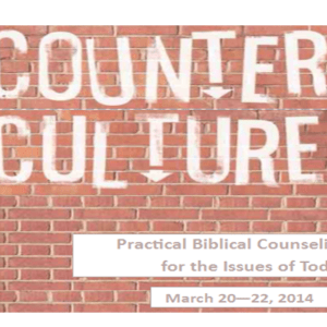 Counter Culture 2014 Audio Recordings