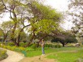 Buddha Park Delhi 01