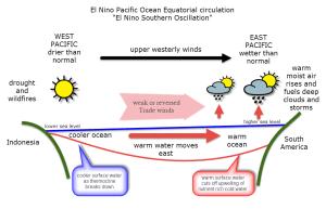 El Niño: how does it impact UK winter weather? « Reigate