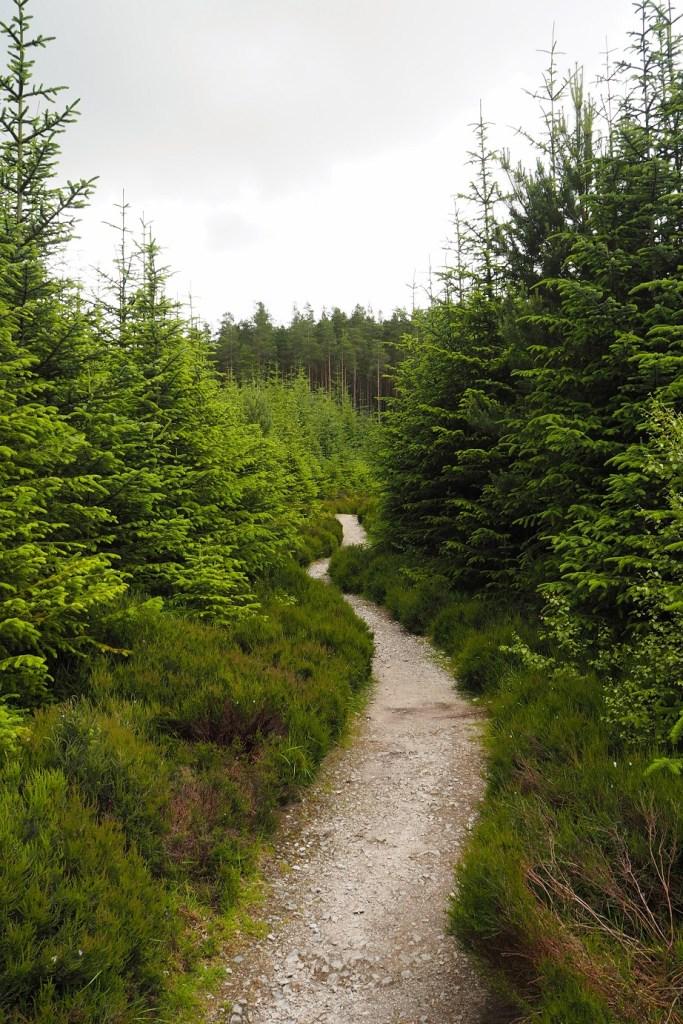 Aberdeenshire walks