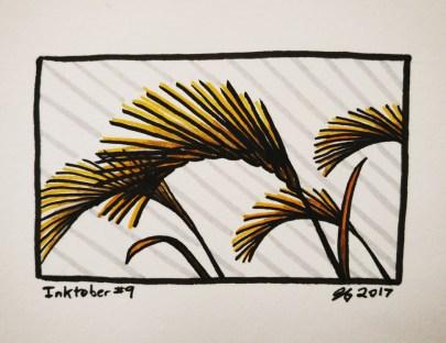 #9 – Foxtail Barley