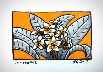 #12 – Plumeria