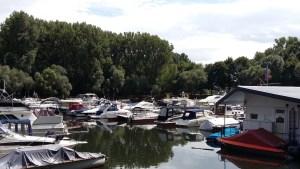 Mit der Sealine 360 von Mondorf bis Oberwinter - Yachthafen Mondorf