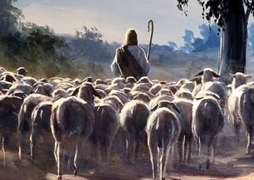 THE SHEPHERD'S FLOCK