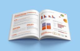 Nous avons animé les chiffres et données clés au moyen d'infographies colorées