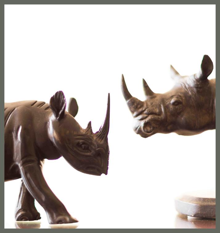 Rhino Public Relations Boston