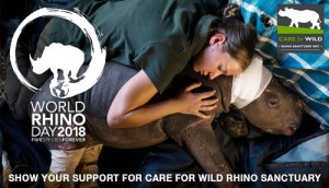 world-rhino-day-store-banner