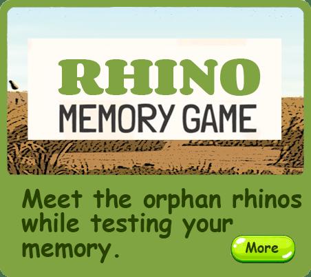 Arthur the Brave Rhino - Memory game