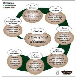 Rhizome consensus flow-chart