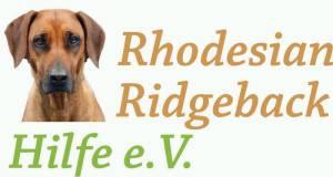 rhodesian ridgeback hilfe ist auf tussangana mbey 'n rhodesian ridgeback