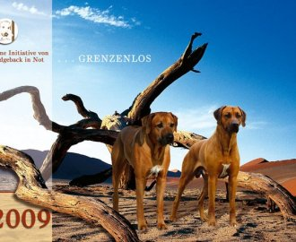 Der Ridgeback in Not Kalender 2010 ( Rückblick alle Monate )