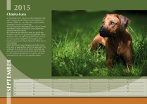 Der Ridgeback in Not Kalender 2015