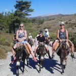 balade en ânes à rhodes