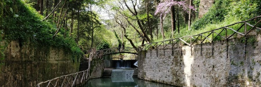 Balade n°2: Le Parc Rodini