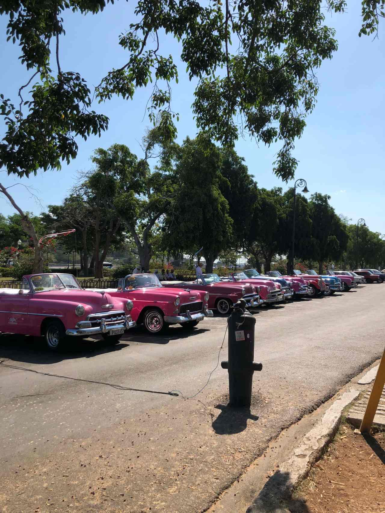 Pink classic cars Havana