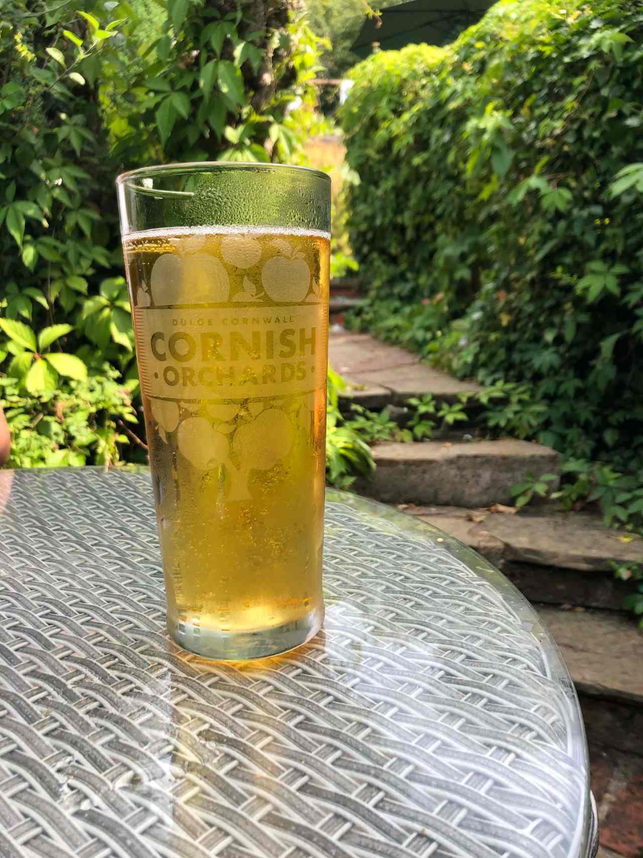 King William IV beer garden Mickleham